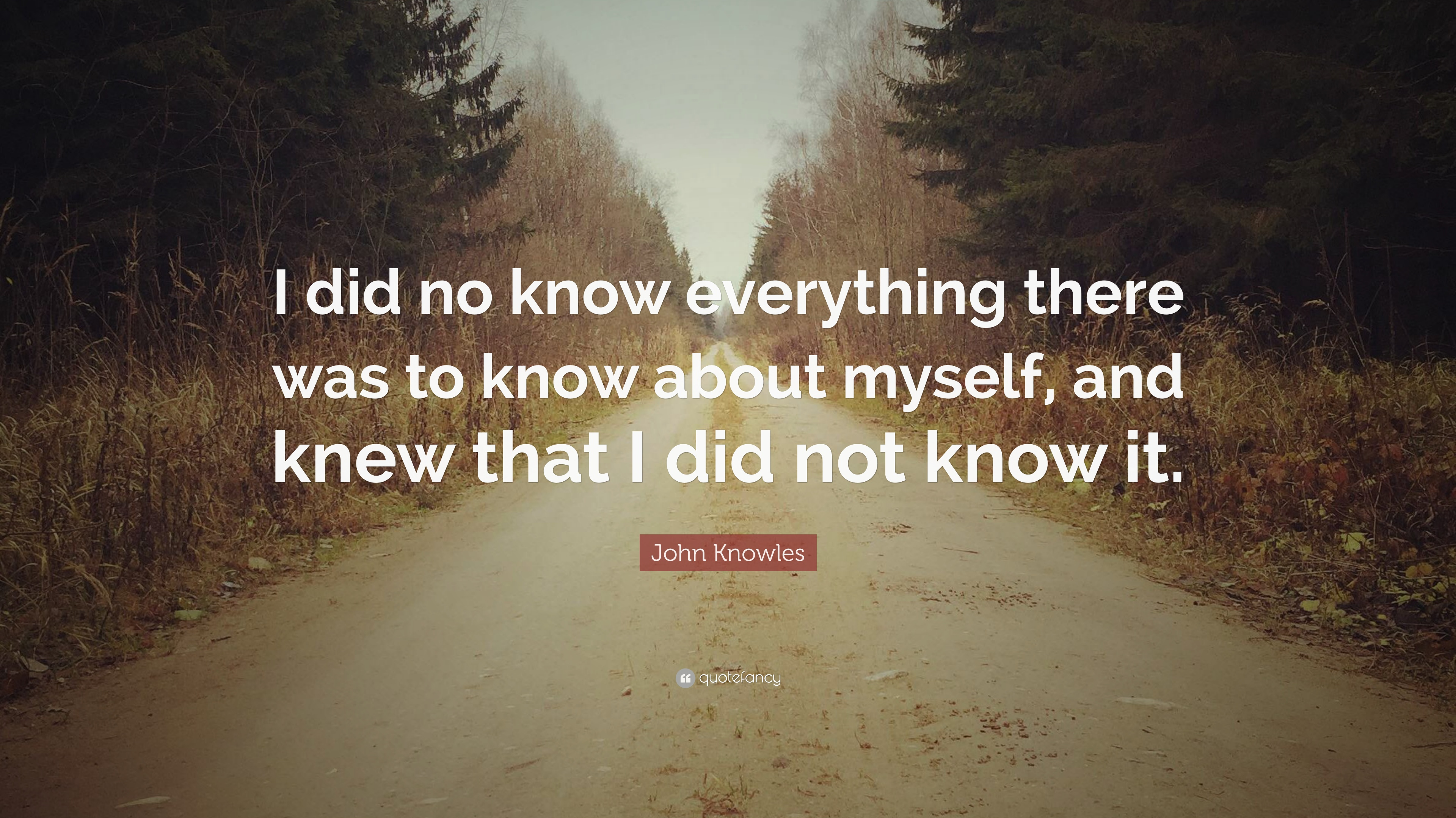 """John Knowles Quote: """"I Did No Know Everything There Was To"""