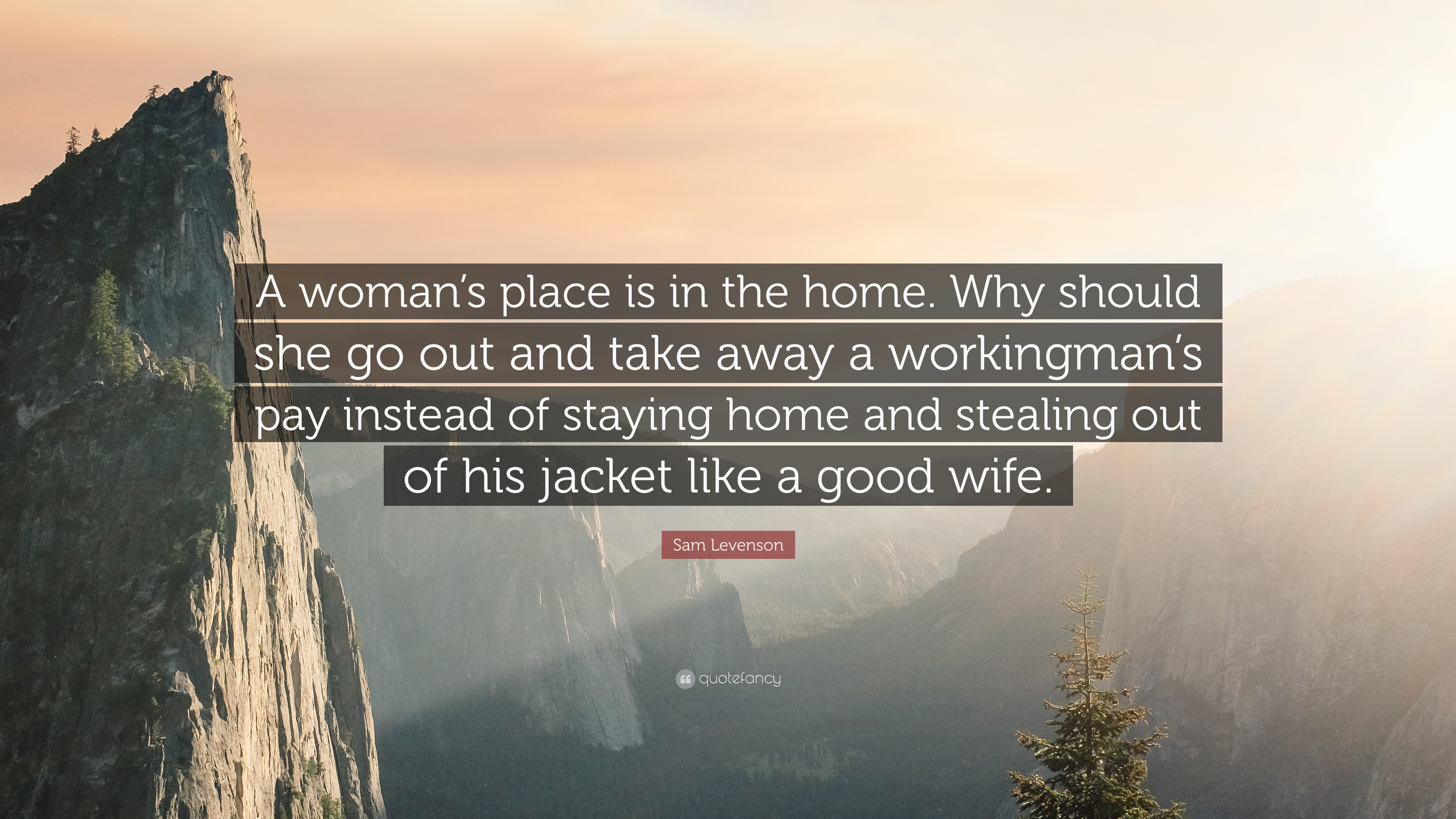 a womans place is in the home