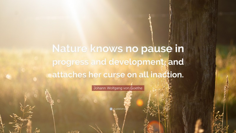 """Johann Wolfgang von Goethe Quote: """"Nature knows no pause in progress and development, and attaches her curse on all inaction."""""""