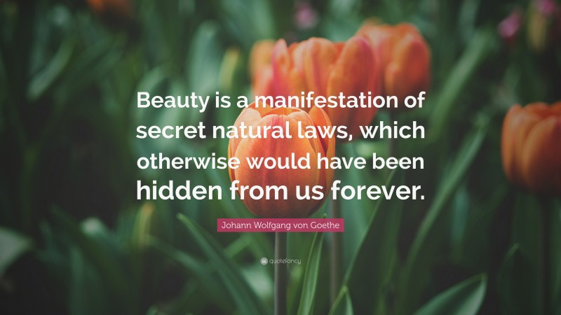 "Johann Wolfgang von Goethe Quote: ""Beauty is a manifestation of secret natural laws, which otherwise would have been hidden from us forever."""
