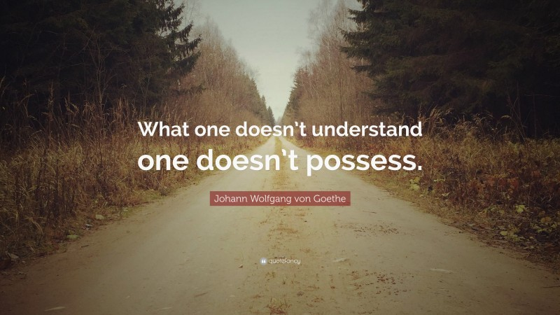 """Johann Wolfgang von Goethe Quote: """"What one doesn't understand one doesn't possess."""""""