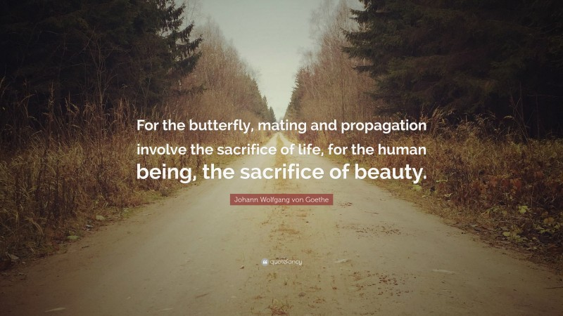 "Johann Wolfgang von Goethe Quote: ""For the butterfly, mating and propagation involve the sacrifice of life, for the human being, the sacrifice of beauty."""