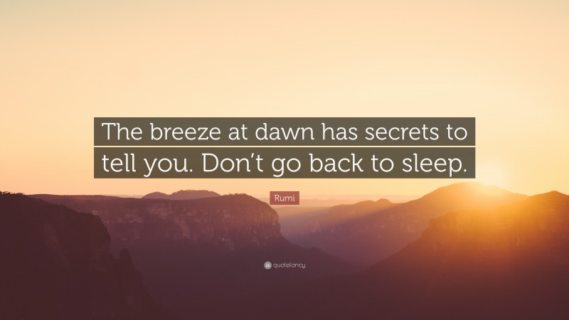 """Rumi Quote: """"The breeze at dawn has secrets to tell you. Don't go back to sleep."""""""