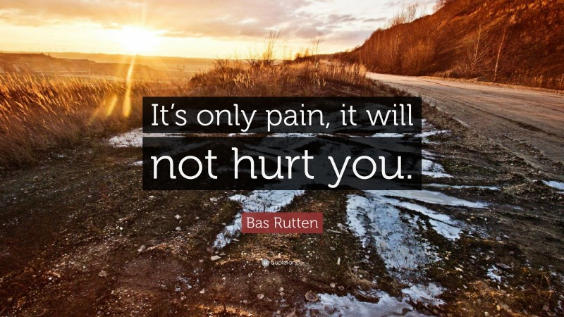 """Bas Rutten Quote: """"It's only pain, it will not hurt you."""""""