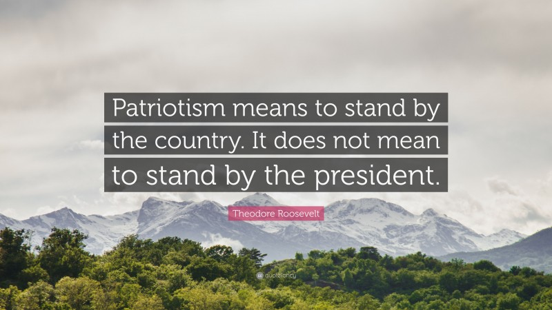 """Country Quotes: """"Patriotism means to stand by the country. It does not mean to stand by the president."""" — Theodore Roosevelt"""