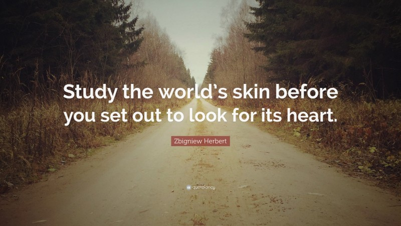 """Zbigniew Herbert Quote: """"Study the world's skin before you set out to look for its heart."""""""