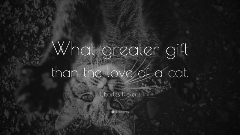"""Charles Dickens Quote: """"What greater gift than the love of a cat."""""""