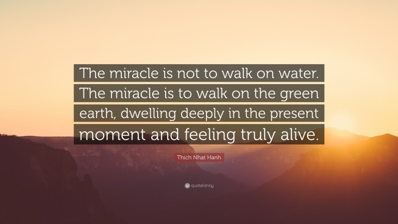 """Thich Nhat Hanh Quote: """"The miracle is not to walk on water. The miracle is to walk on the green earth, dwelling deeply in the present moment and feeling truly alive."""""""