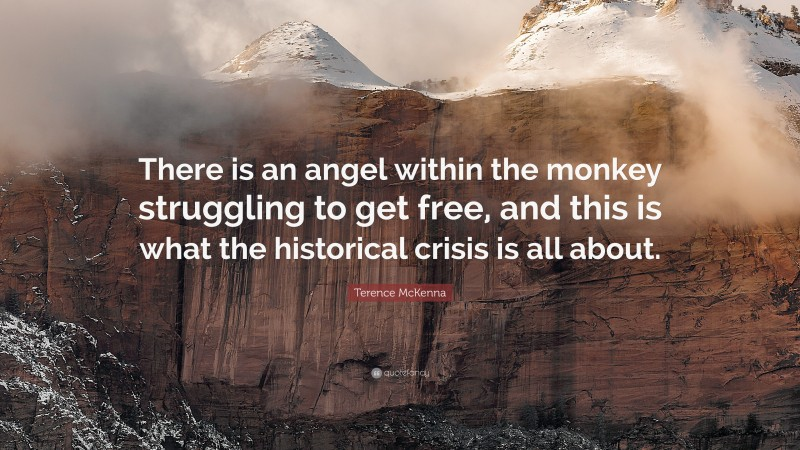 """Terence McKenna Quote: """"There is an angel within the monkey struggling to get free, and this is what the historical crisis is all about."""""""