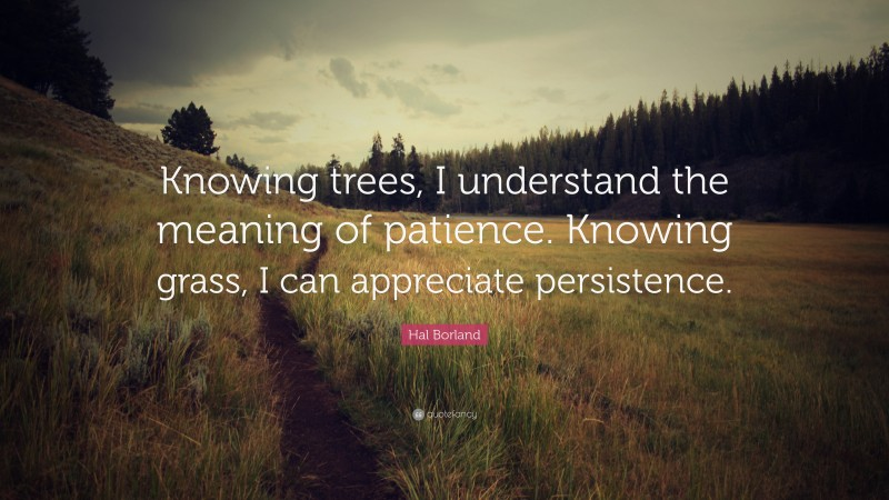 """Hal Borland Quote: """"Knowing trees, I understand the meaning of patience. Knowing grass, I can appreciate persistence."""""""
