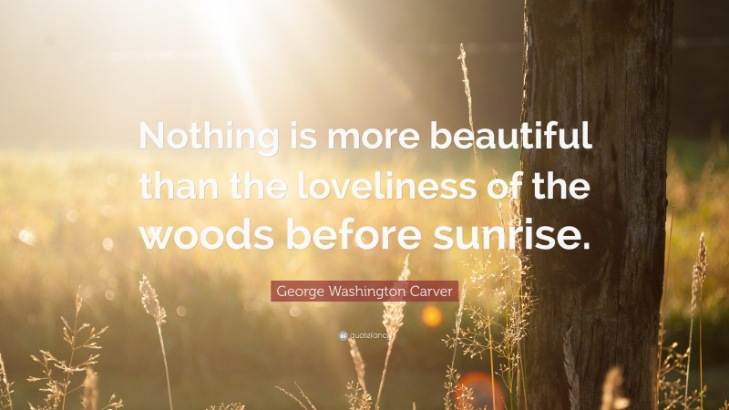 """George Washington Carver Quote: """"Nothing is more beautiful than the loveliness of the woods before sunrise."""""""