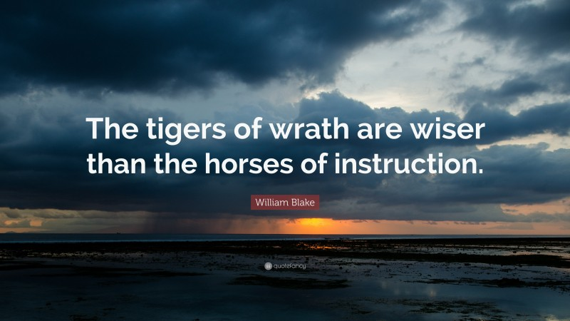 """William Blake Quote: """"The tigers of wrath are wiser than the horses of instruction."""""""