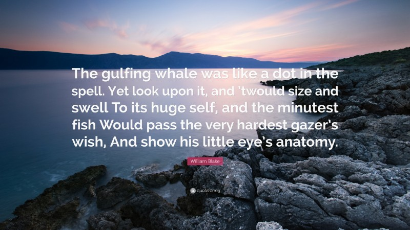 """William Blake Quote: """"The gulfing whale was like a dot in the spell. Yet look upon it, and 'twould size and swell To its huge self, and the minutest fish Would pass the very hardest gazer's wish, And show his little eye's anatomy."""""""