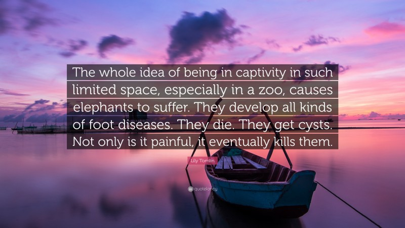 """Lily Tomlin Quote: """"The whole idea of being in captivity in such limited space, especially in a zoo, causes elephants to suffer. They develop all kinds of foot diseases. They die. They get cysts. Not only is it painful, it eventually kills them."""""""