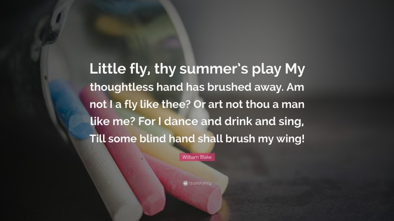 """William Blake Quote: """"Little fly, thy summer's play My thoughtless hand has brushed away. Am not I a fly like thee? Or art not thou a man like me? For I dance and drink and sing, Till some blind hand shall brush my wing!"""""""