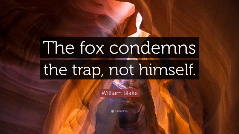 """William Blake Quote: """"The fox condemns the trap, not himself."""""""