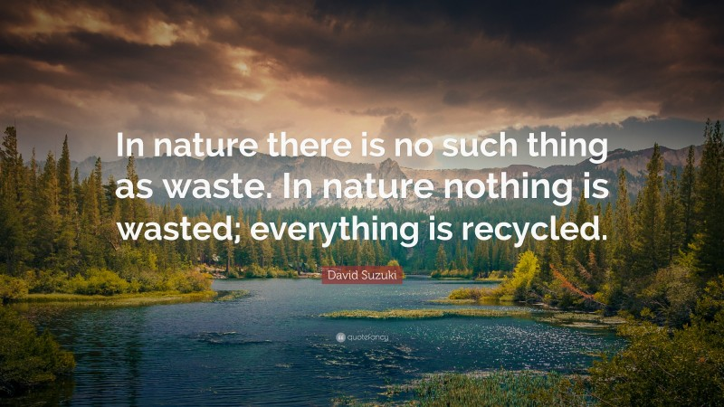 """David Suzuki Quote: """"In nature there is no such thing as waste. In nature nothing is wasted; everything is recycled."""""""