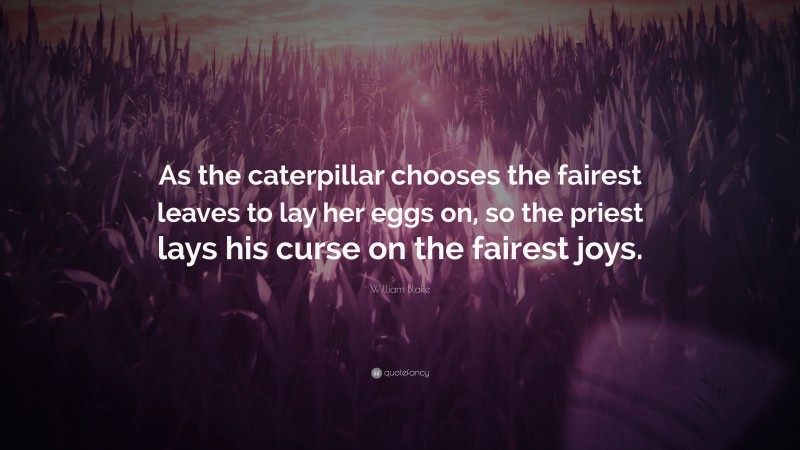 """William Blake Quote: """"As the caterpillar chooses the fairest leaves to lay her eggs on, so the priest lays his curse on the fairest joys."""""""