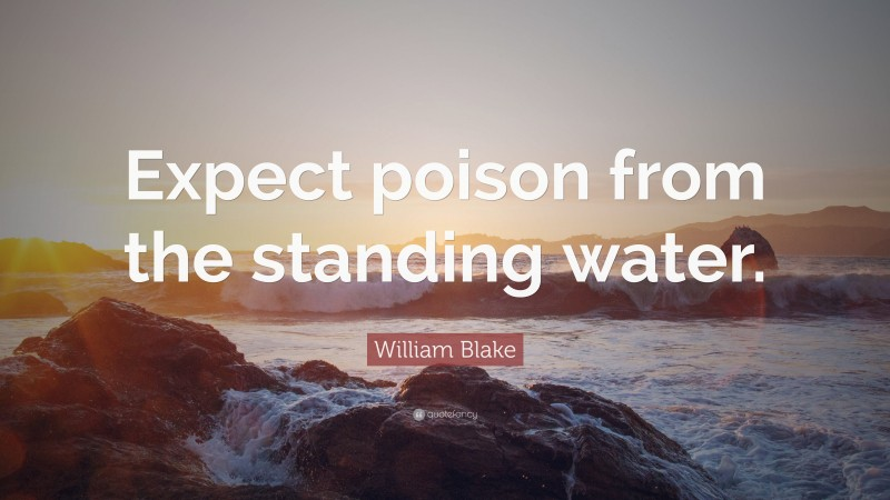 """William Blake Quote: """"Expect poison from the standing water."""""""
