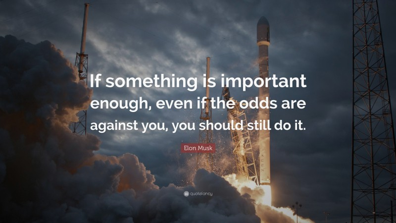 "Elon Musk Quote: ""If something is important enough, even if the odds are against you, you should still do it."""