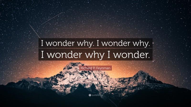 "Richard P. Feynman Quote: ""I wonder why. I wonder why. I wonder why I wonder."""