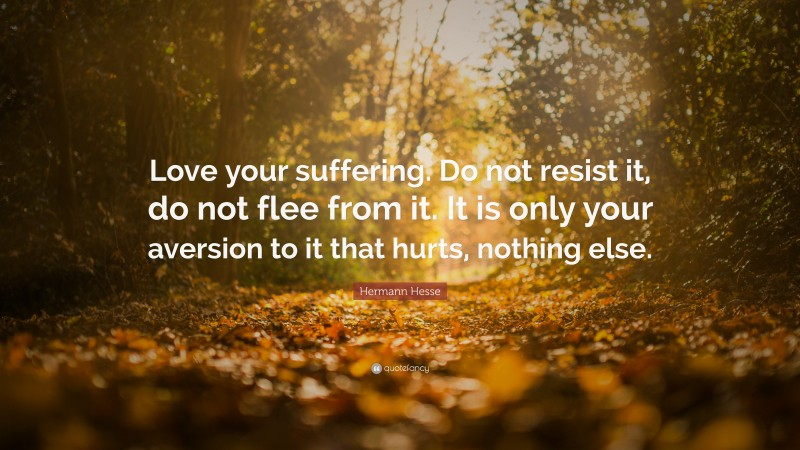 """Hermann Hesse Quote: """"Love your suffering. Do not resist it, do not flee from it. It is only your aversion to it that hurts, nothing else."""""""