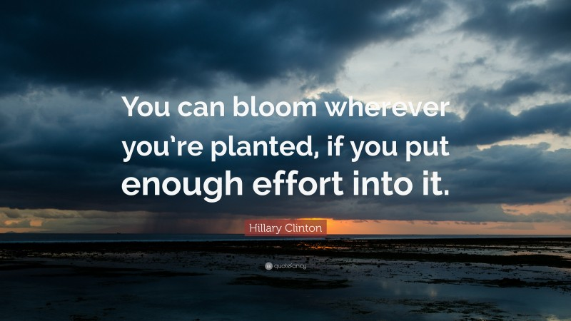 """Hillary Clinton Quote: """"You can bloom wherever you're planted, if you put enough effort into it."""""""
