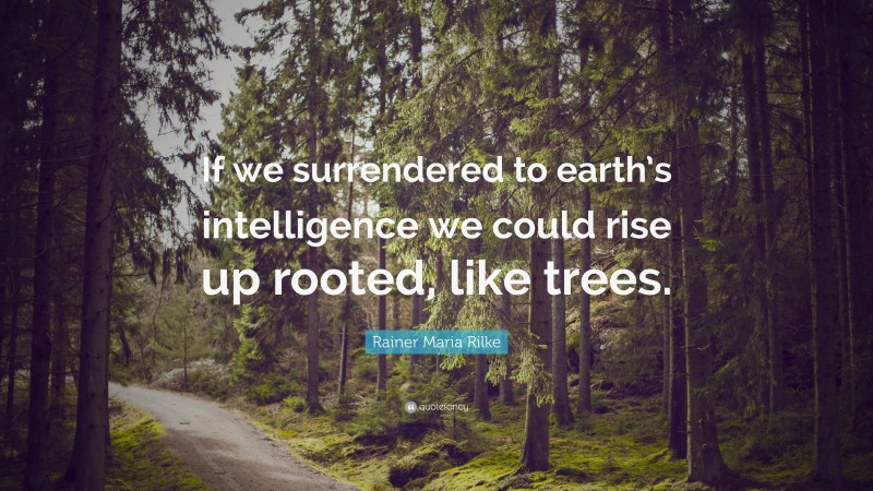 """Rainer Maria Rilke Quote: """"If we surrendered to earth's intelligence we could rise up rooted, like trees."""""""