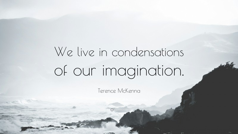"""Terence McKenna Quote: """"We live in condensations of our imagination."""""""