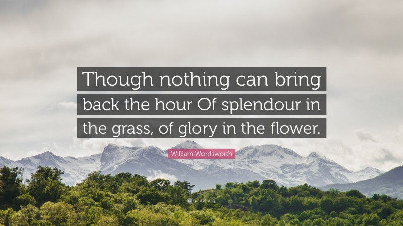 """William Wordsworth Quote: """"Though nothing can bring back the hour Of splendour in the grass, of glory in the flower."""""""
