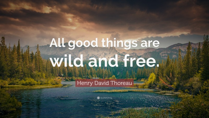 "Nature Quotes: ""All good things are wild and free."" — Henry David Thoreau"