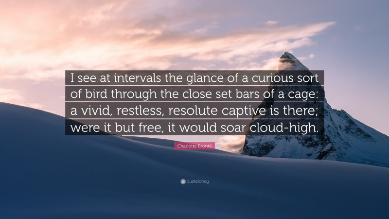 """Charlotte Brontë Quote: """"I see at intervals the glance of a curious sort of bird through the close set bars of a cage: a vivid, restless, resolute captive is there; were it but free, it would soar cloud-high."""""""