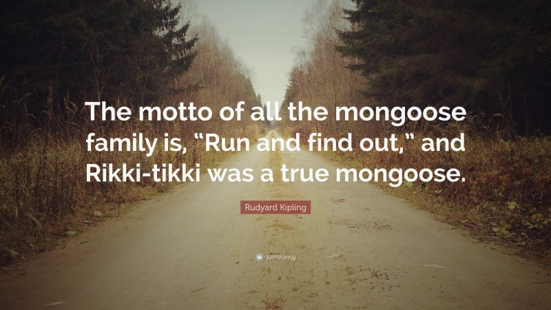 """Rudyard Kipling Quote: """"The motto of all the mongoose family is, """"Run and find out,"""" and Rikki-tikki was a true mongoose."""""""