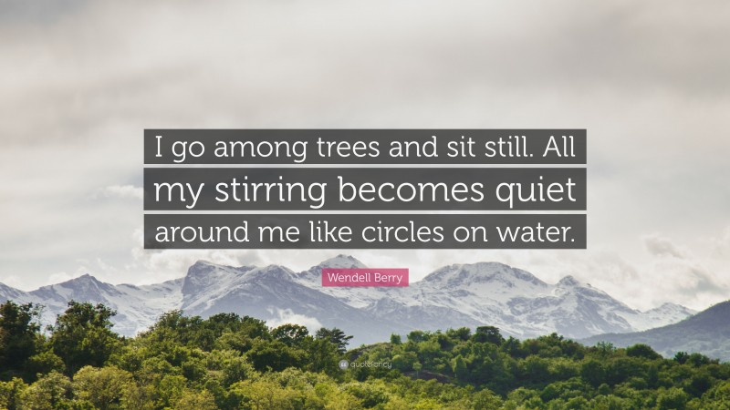 """Wendell Berry Quote: """"I go among trees and sit still. All my stirring becomes quiet around me like circles on water."""""""