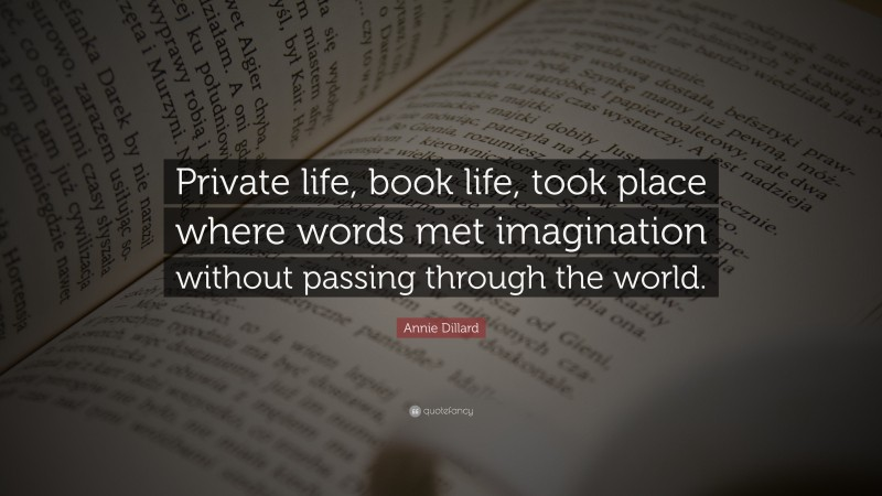 """Annie Dillard Quote: """"Private life, book life, took place where words met imagination without passing through the world."""""""
