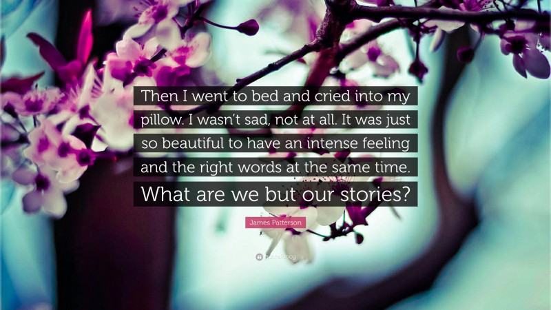 """James Patterson Quote: """"Then I went to bed and cried into my pillow. I wasn't sad, not at all. It was just so beautiful to have an intense feeling and the right words at the same time. What are we but our stories?"""""""