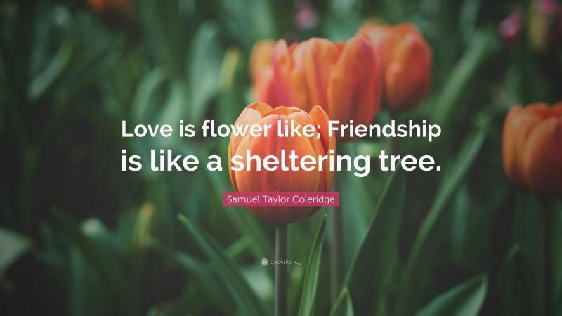 "Samuel Taylor Coleridge Quote: ""Love is flower like; Friendship is like a sheltering tree."""
