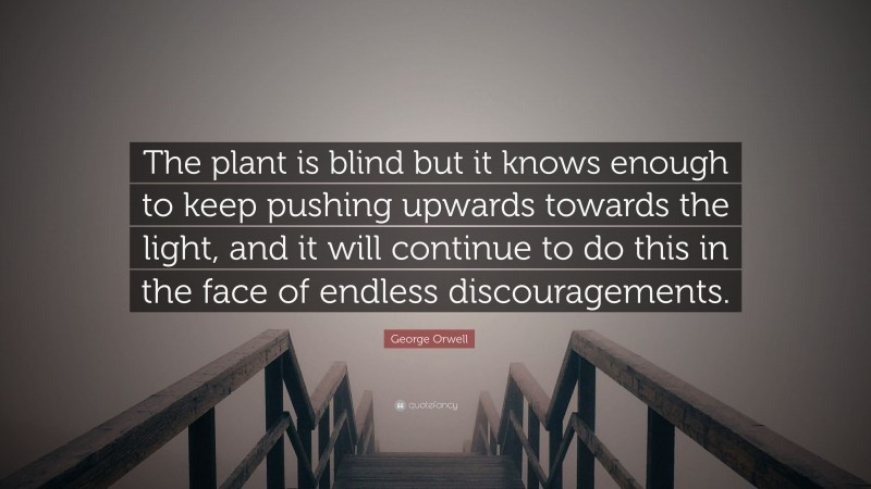 """George Orwell Quote: """"The plant is blind but it knows enough to keep pushing upwards towards the light, and it will continue to do this in the face of endless discouragements."""""""