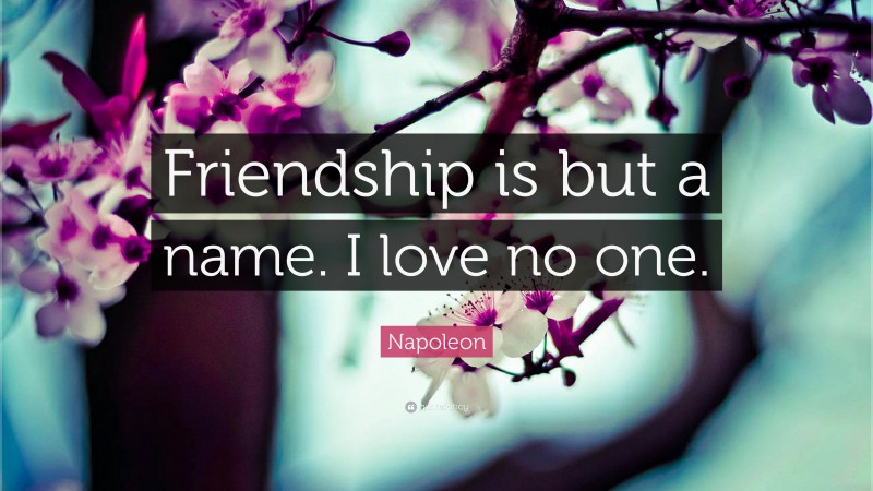 """Napoleon Quote: """"Friendship is but a name. I love no one."""""""