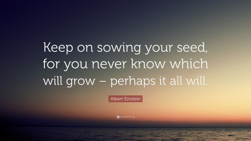 """Albert Einstein Quote: """"Keep on sowing your seed, for you never know which will grow – perhaps it all will."""""""