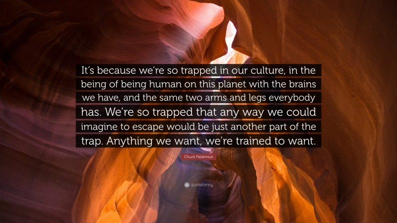 """Chuck Palahniuk Quote: """"It's because we're so trapped in our culture, in the being of being human on this planet with the brains we have, and the same two arms and legs everybody has. We're so trapped that any way we could imagine to escape would be just another part of the trap. Anything we want, we're trained to want."""""""