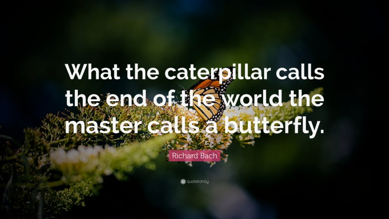 """Richard Bach Quote: """"What the caterpillar calls the end of the world the master calls a butterfly."""""""
