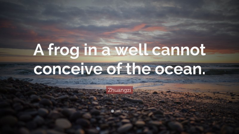 """Zhuangzi Quote: """"A frog in a well cannot conceive of the ocean."""""""