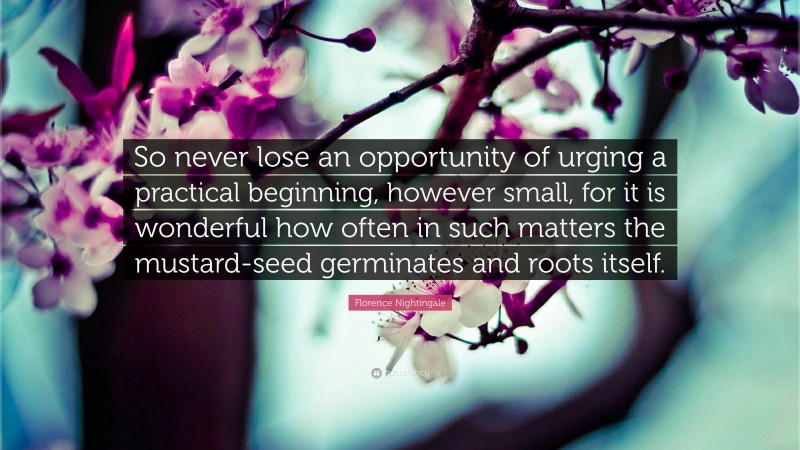 """Florence Nightingale Quote: """"So never lose an opportunity of urging a practical beginning, however small, for it is wonderful how often in such matters the mustard-seed germinates and roots itself."""""""