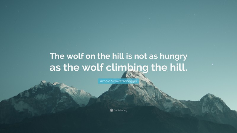 """Arnold Schwarzenegger Quote: """"The wolf on the hill is not as hungry as the wolf climbing the hill."""""""