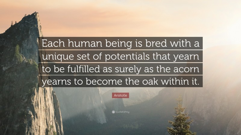 """Aristotle Quote: """"Each human being is bred with a unique set of potentials that yearn to be fulfilled as surely as the acorn yearns to become the oak within it."""""""