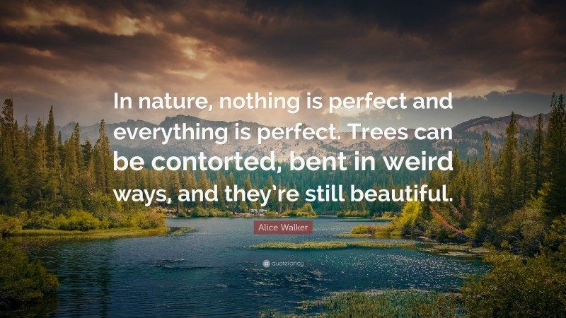 """Alice Walker Quote: """"In nature, nothing is perfect and everything is perfect. Trees can be contorted, bent in weird ways, and they're still beautiful."""""""