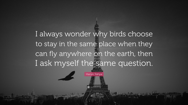 """Harun Yahya Quote: """"I always wonder why birds choose to stay in the same place when they can fly anywhere on the earth, then I ask myself the same question."""""""