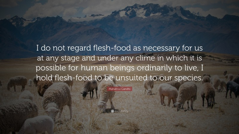 """Mahatma Gandhi Quote: """"I do not regard flesh-food as necessary for us at any stage and under any clime in which it is possible for human beings ordinarily to live, I hold flesh-food to be unsuited to our species."""""""