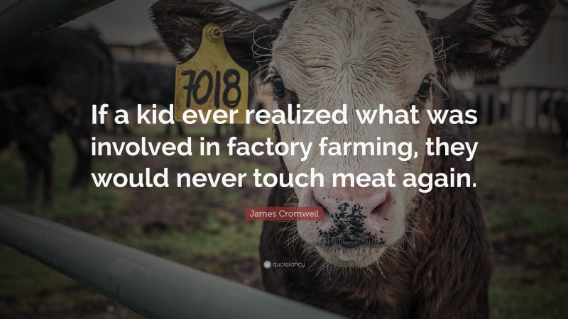 """James Cromwell Quote: """"If a kid ever realized what was involved in factory farming, they would never touch meat again."""""""